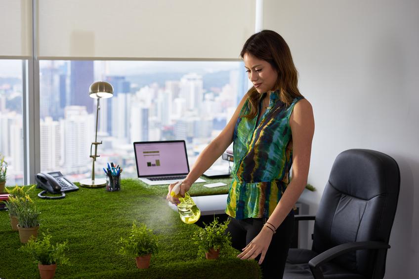 Les plantes à avoir sur son lieu de travail