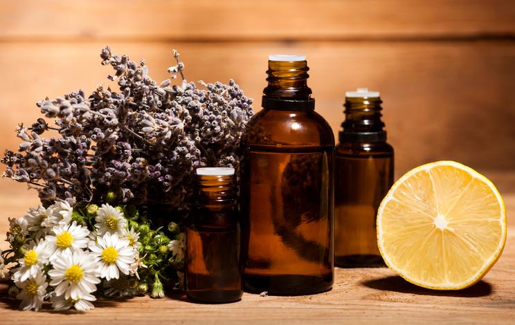 5 plantes pour prendre soin de votre corps