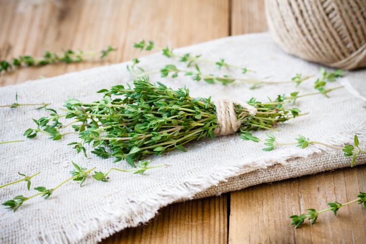 Le thym, une herbe aux multiples bienfaits