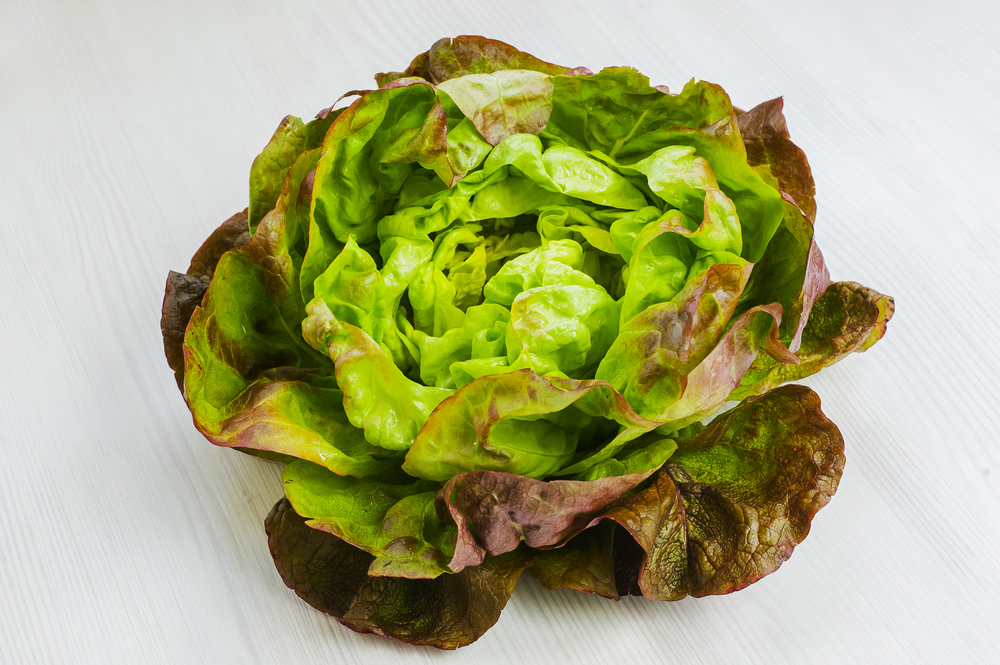 Combien de calories dans la salade batavia ?
