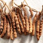 le-champignon-tibetain-pour-maigrir